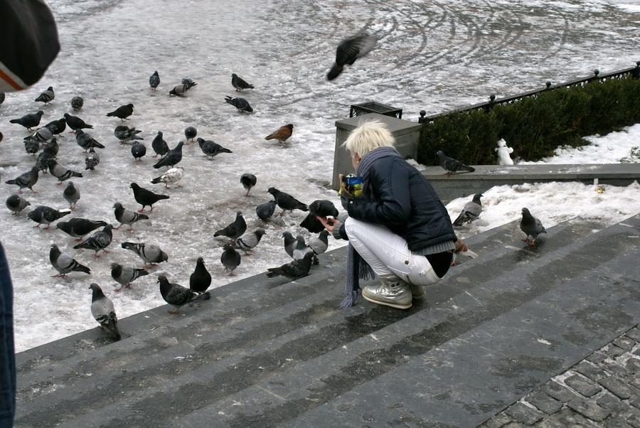 Черновцы площадь филармонии фото
