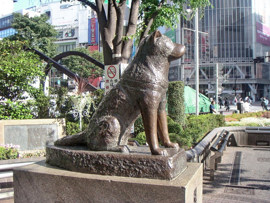 Хатико: Самый верный друг (Hachiko: A Dog's Story)