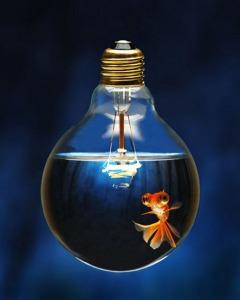 Как равзить креативность или где прячется муза